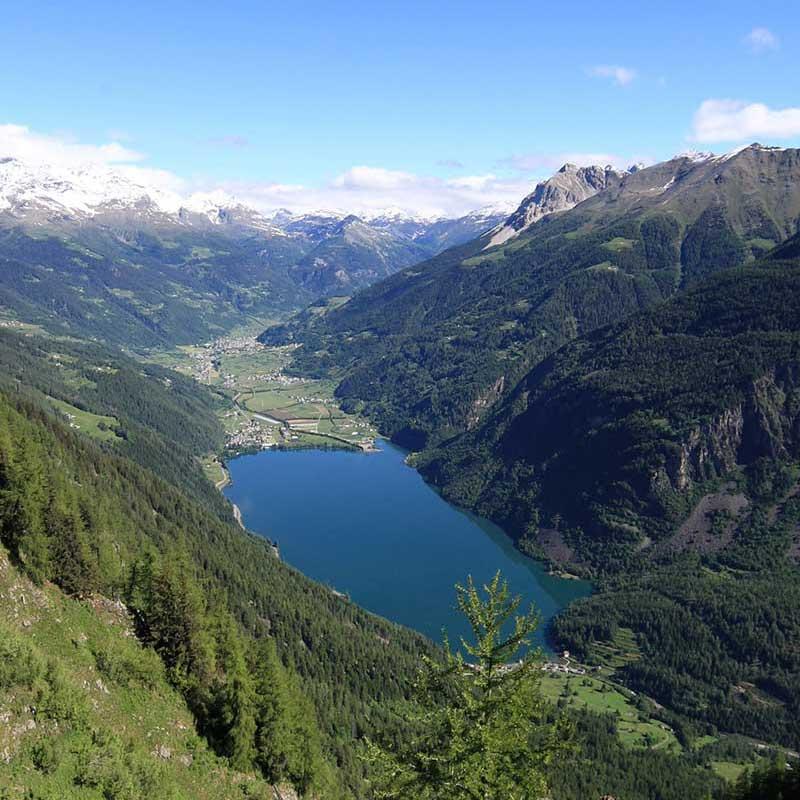 Naturbestattung in der Schweiz Pax Montana